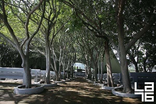 Candela-Parroquia-de-San-Felipe-Cuernavaca-004