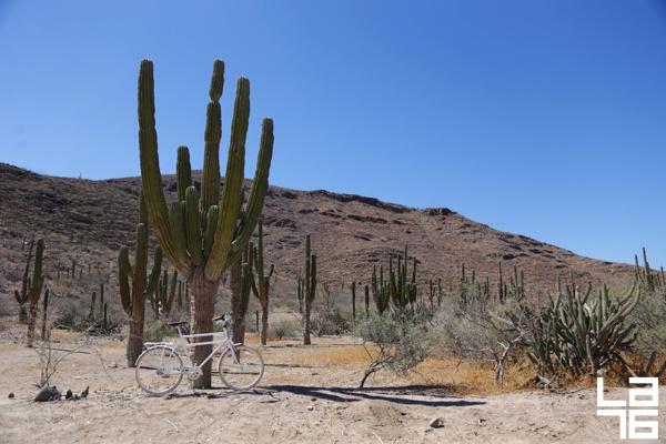 La-Paz-Baja-Mexico-travel-guide-on-two-wheels-LA76-photography_0035