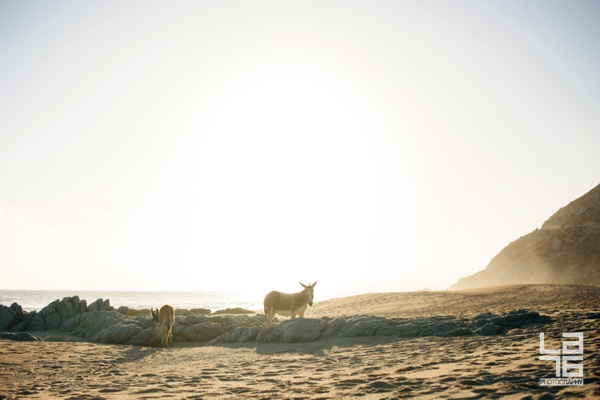 east-cape-baja-LA76-photography_0014
