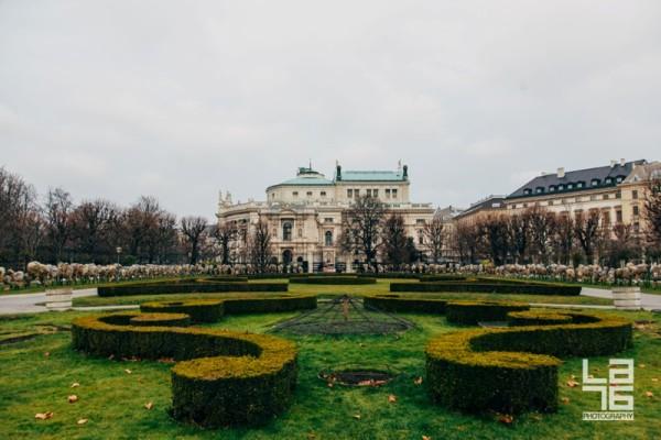 + Vienna gardens look beautiful even in winter.