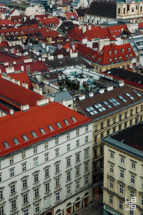+ Vienna rooftops.
